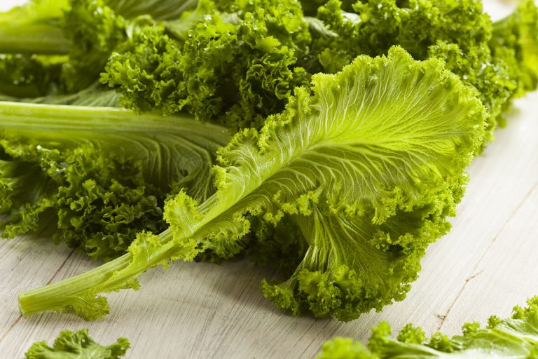 Mustard Greens – a lesser known yet potent anti-cancer leafy green