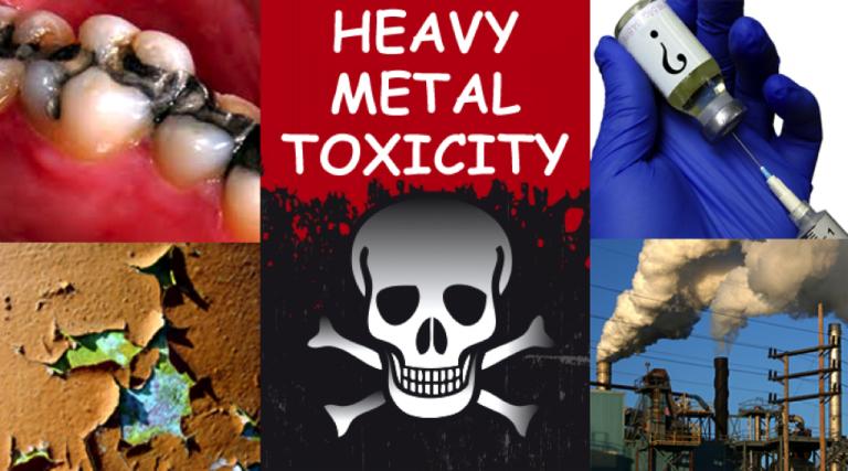 Metal Toxicity